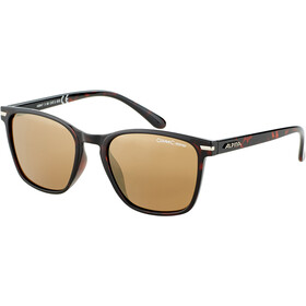 Alpina Yefe Okulary, havanna/gold mirror